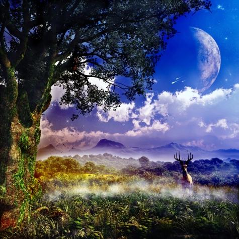 dreamstime_m_25553059